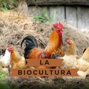 La biocultura revitalitza el primer sector
