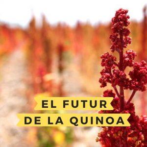 El futur de la quinoa, el futur dels cultius